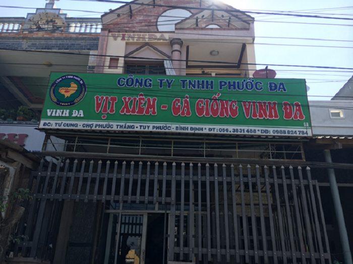 Địa chỉ mua gà con giống uy tín tại Quy Nhơn