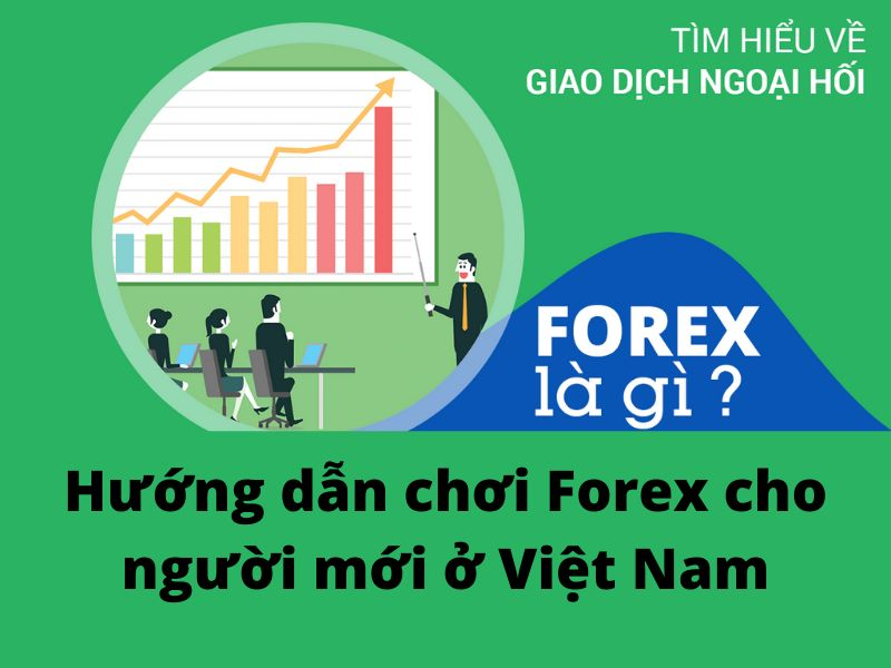 Forex cho người mới bắt đầu ở Việt Nam